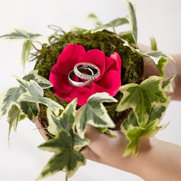 Lila Rose Ring Nest