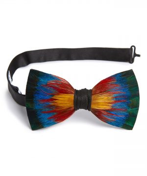Men's Brackish & Bell Spectrum Feather Bow Tie