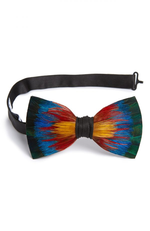 Men's Brackish & Bell Spectrum Feather Bow Tie
