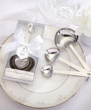 Measuring Spoon In White Box (3 spoons)
