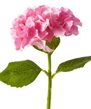 "Artificial Hydrangea Stem - 14"" - 72 Stems - Pink"