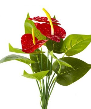 Artificial Red Anthurium Bunch 1 - 48 Pieces - Red