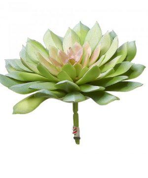 Artificial Succulents - Green - 24 Pieces