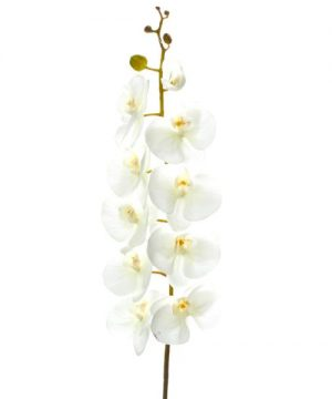 """Decostar Artificial Orchid 44"""" - 6 Pieces - White"""