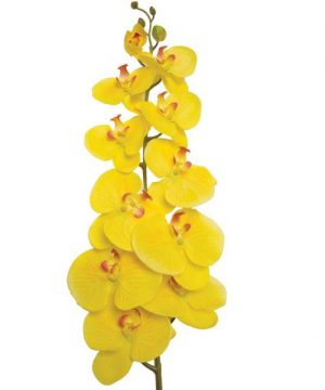 "Decostar Phalaenopsis Orchid Natural Touch Spray Stem 50"" - 12 Pieces - Yellow"